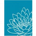 Chrysanthemum on Blue