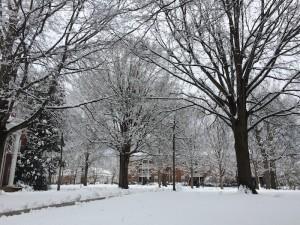 Snow at Elon, January 2015