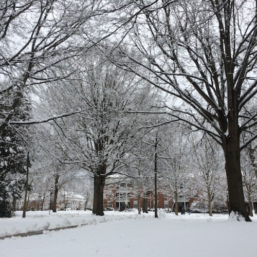 Snow at Elon, January 2015