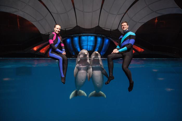 AT&T Dolphin Celebration_532